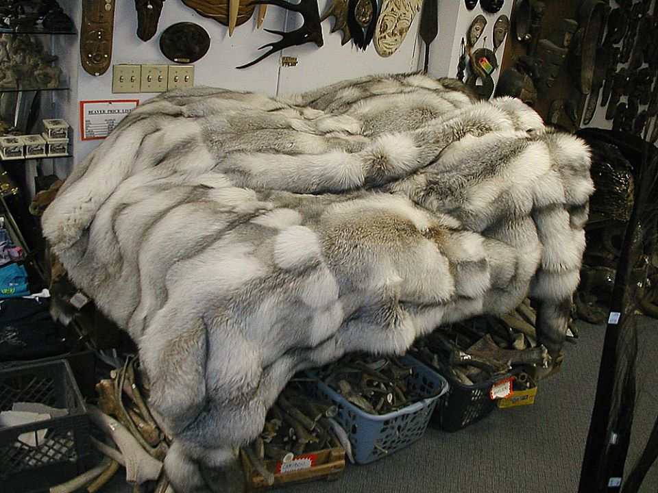 Alaska Fur Exchange 3